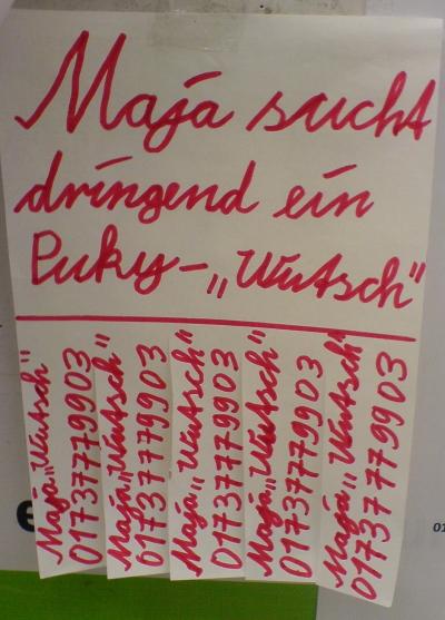 Puky-Wutsch